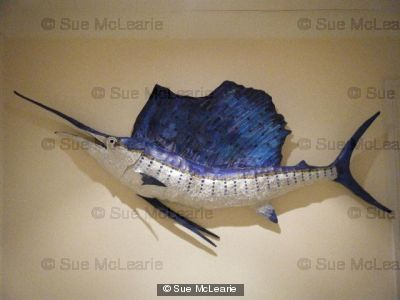 Sail-fish by Sue McLearie