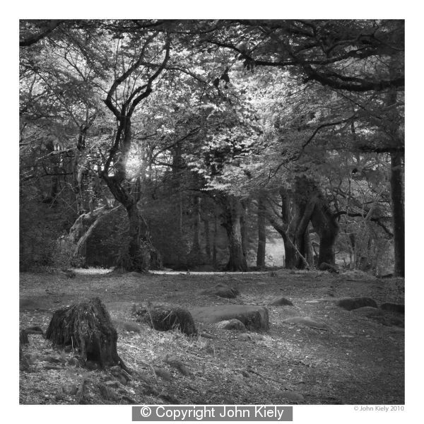 Afon Dwyfor 2 by John Kiely