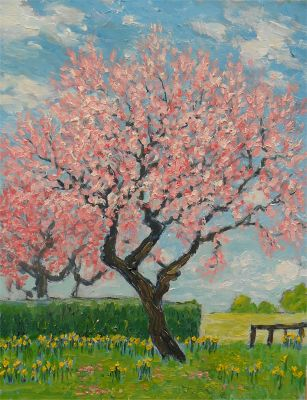 Blossom Tree by Colin Ross Jack