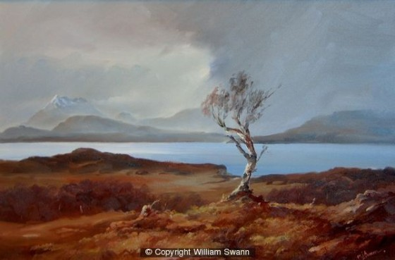 Survivor, Tokavaig, Isle of Skye by William Swann