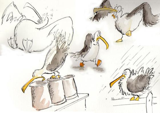 Seagull by Henry Cruickshank