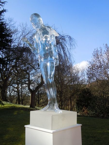Boy Ice Angel by Jane Robbins