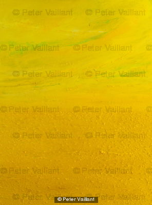 Fields of Yellow by Peter Valliant