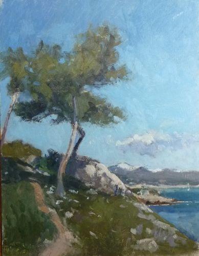 Parasol Pines Cap Dantibes by  Karl Terry