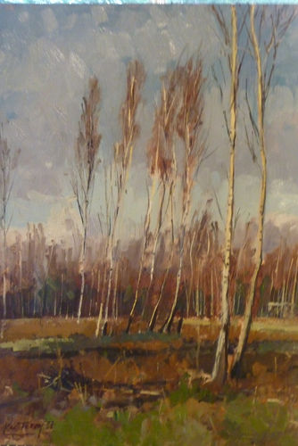 Beckley Birch Trees by  Karl Terry