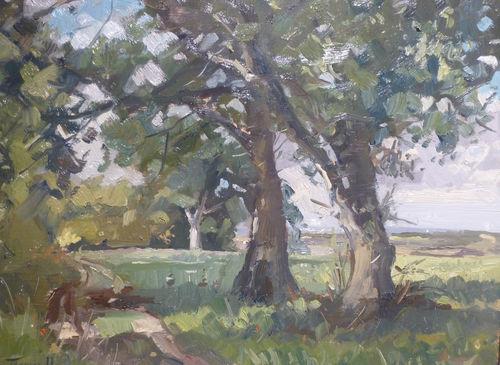 Summer Trees Peasmarsh by  Karl Terry